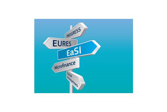 Kayıtdışı İstihdam ile Mücadele İçin EaSI Teklif Çağrısı