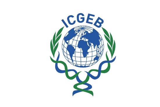 ICGEB İşbirlikçi Araştırma (Collaborative Resarch Programme – CRP) Hibe Programı