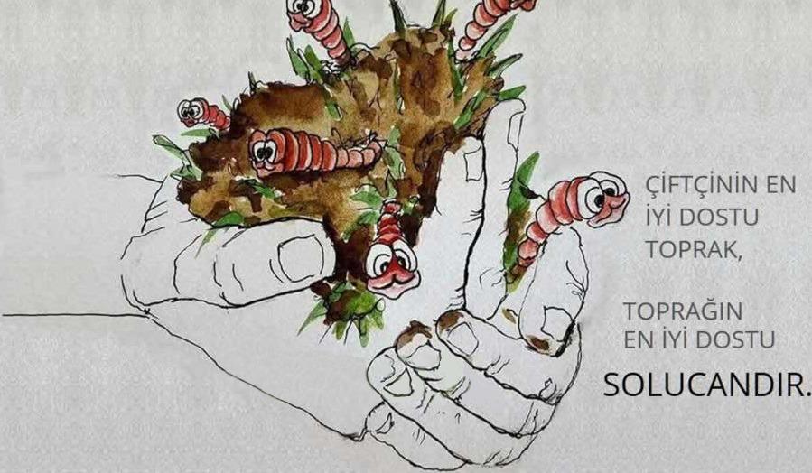 KOSGEB Solucan Gübresi Üretimi Hibe Desteği 2020 Yılı