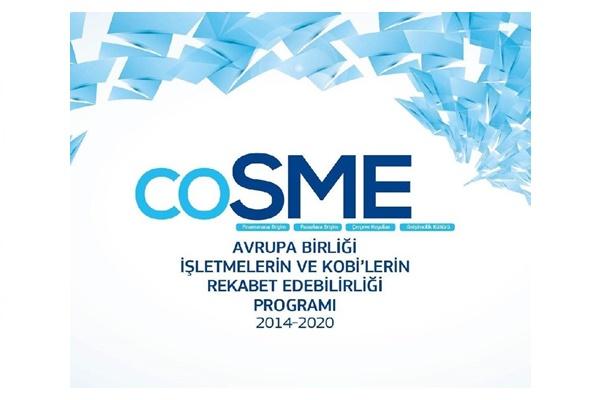 Sosyal Ekonomi Misyonları Teklif Çağrısı - COSME